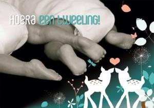 meerbeek zwanger tweeling