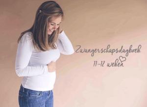 zwanger zwangerschapsupdate zwangerschapsdagboek 11 12 weken MAMA to the max