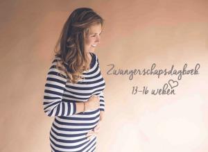 zwanger; zwangerschapsupdate; #3; zwangerschapsdagboek; zwangerschap; 13 14 15 16 weken; tweede trimester; MAMA to the max