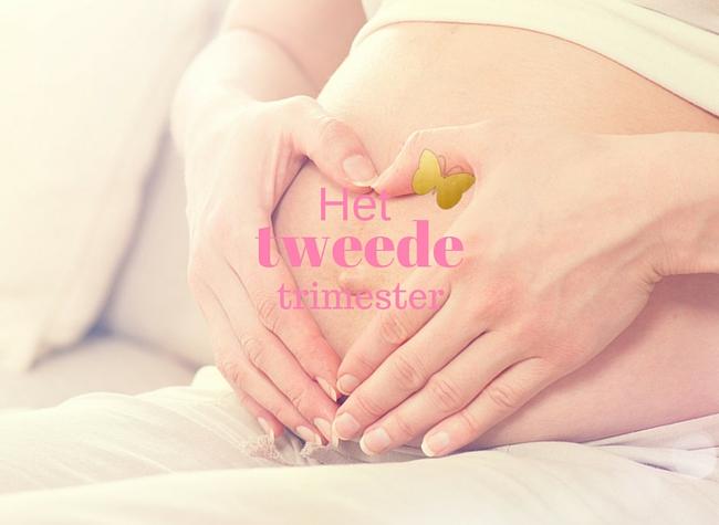 tweede trimester zwanger zwangerschap MAMA to the max