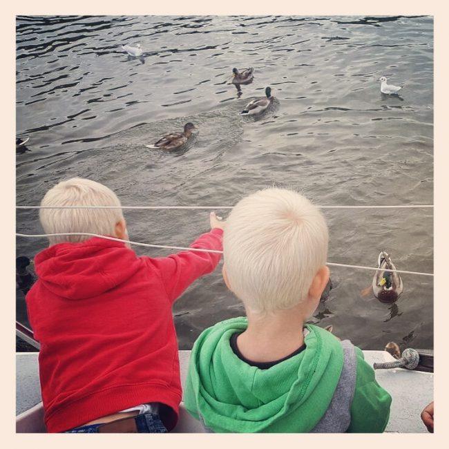 zeilen-met-kinderen_eendjes-voeren