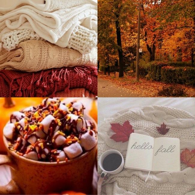 herfst fall autumn lievelingsjaargetijde seizoen jaargetijde MAMA to the max