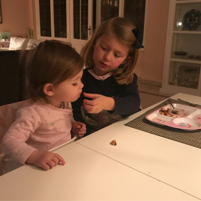 weekly snaps 4 2018 wekelijkse dagboek maastricht mama moeder baby kleuter MAMA to the max