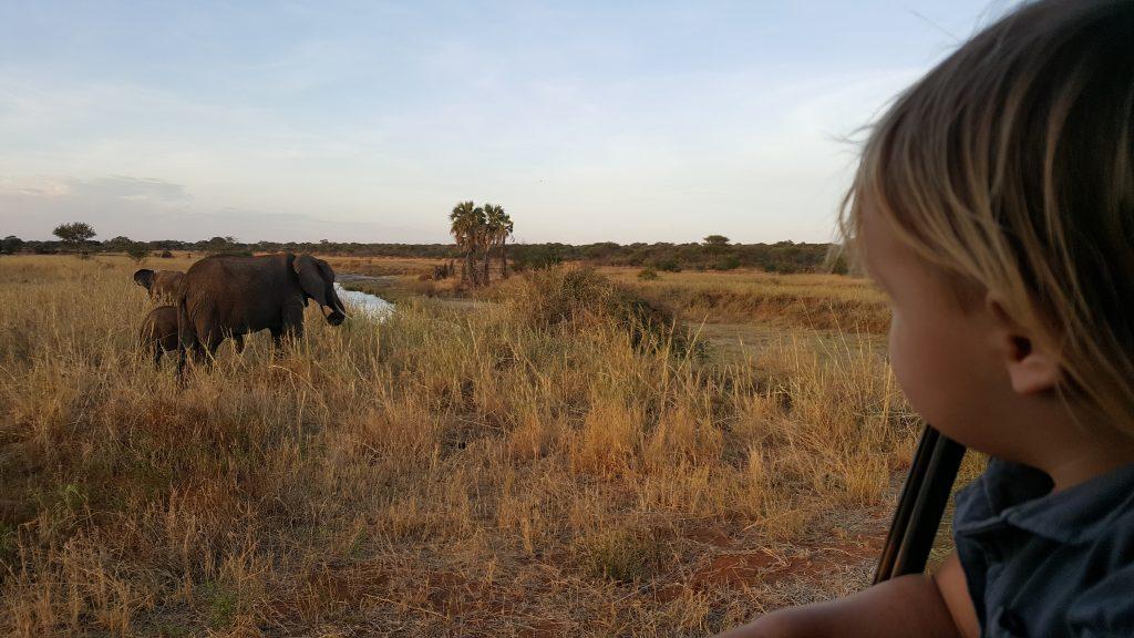 terug naar Afrika mama in het buitenland mama to the max gezin olifant