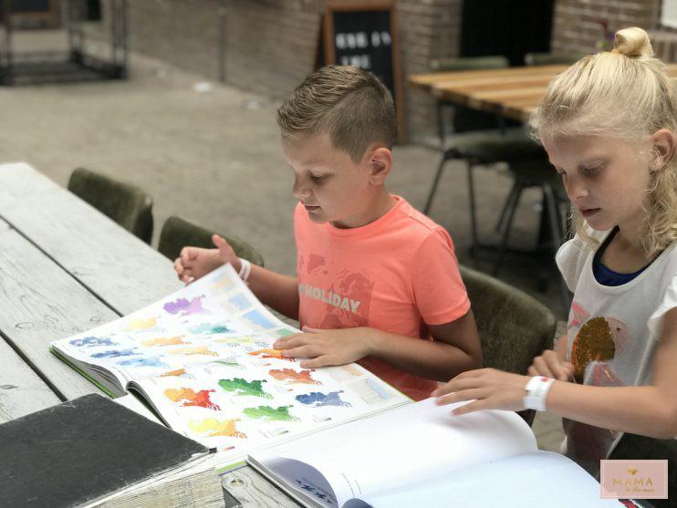Blogtrip Veluwe, GeoFort, kinderuitje, weg met kinderen, MAMA to the max