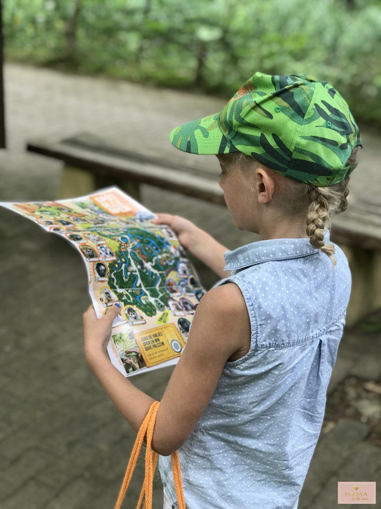 Gelderse Streken, Blogtrip Julianatoren, Apenheul, Nederlands Openluchtmuseum, kinderuitjes, op avontuur, MAMA to the max