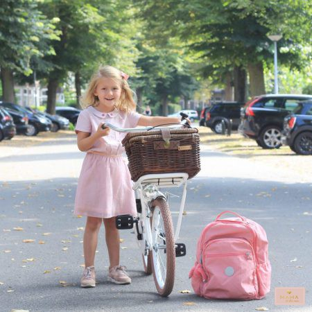 fiets 20 inch little treasures vierkant