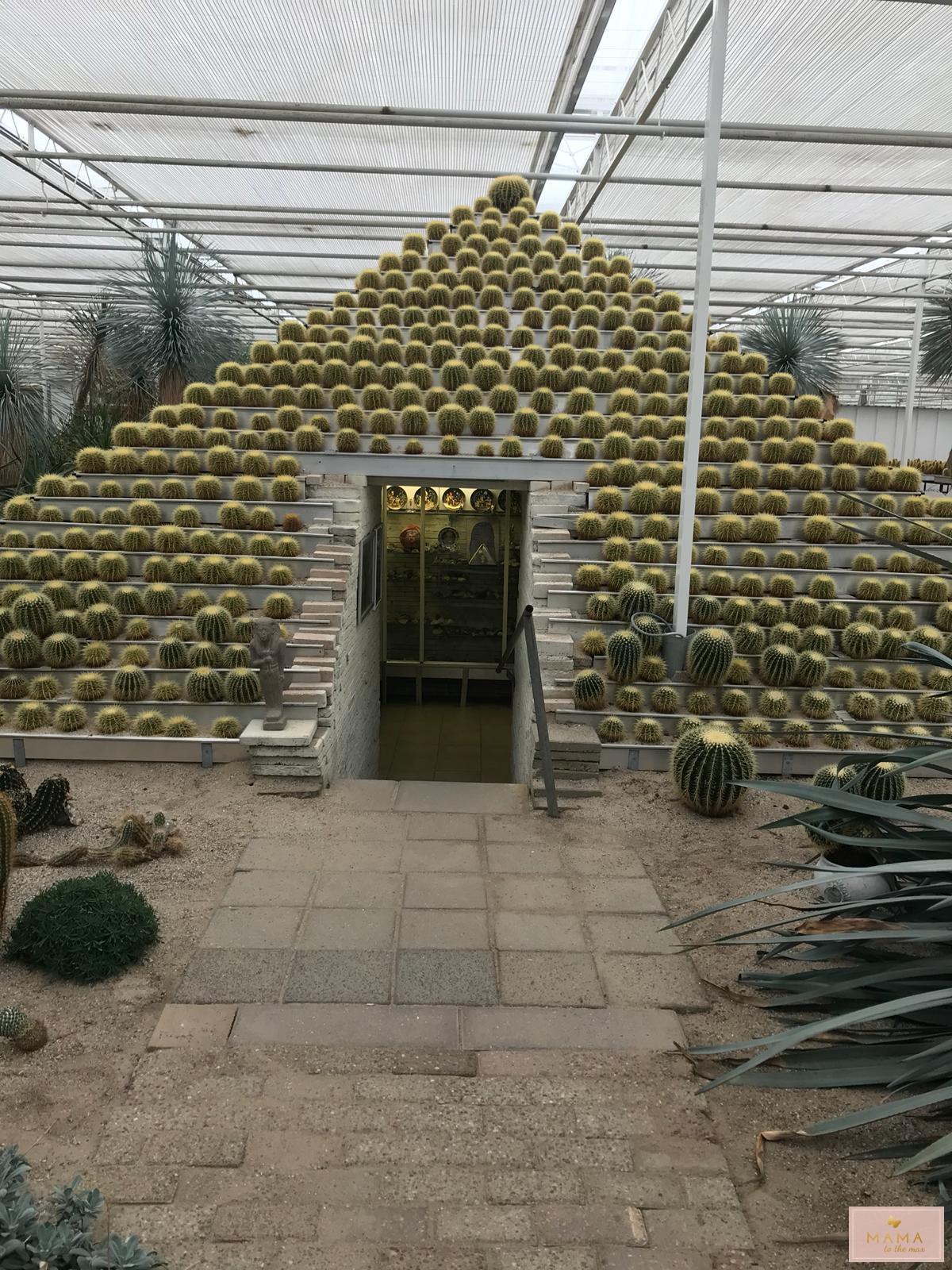 Cactusoase, Veluwe, Blogtrip 3, Kinderuitjes