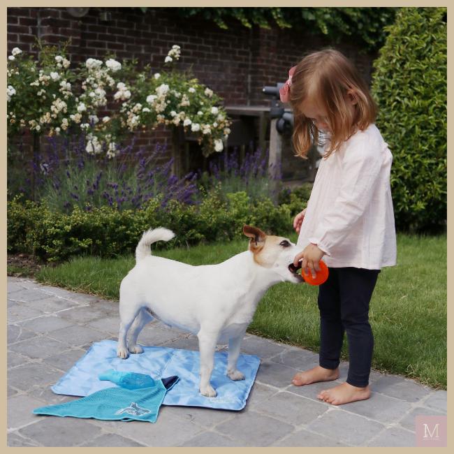 Juulke, Plein.nl, mama to the max, honden speelgoedJuulke, Plein.nl, mama to the max, honden speelgoed