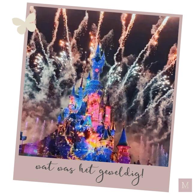 weekly snaps 2020, januari 2020, week 4, mama to the max, blooming blends, essentiële oliën, young living, lifestyle, mama, vrouw, zusjes, Maastricht, detox, afvallen, gezondheid, meisjesmama, familie, geluk, plopsaland, sapjes, Frozen celebration Disneyland Parijs, Disneyland Parijs, zusjes, VTech